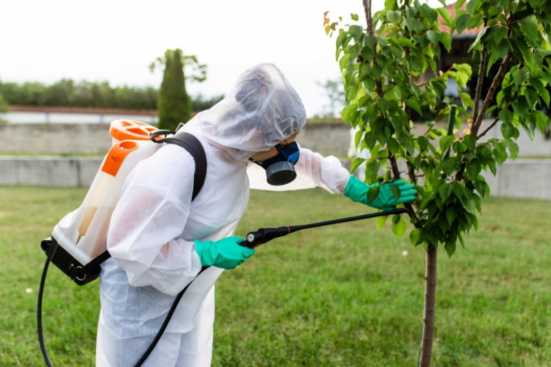how to chose pest exterminator